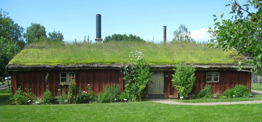Old barn house with a grass roof